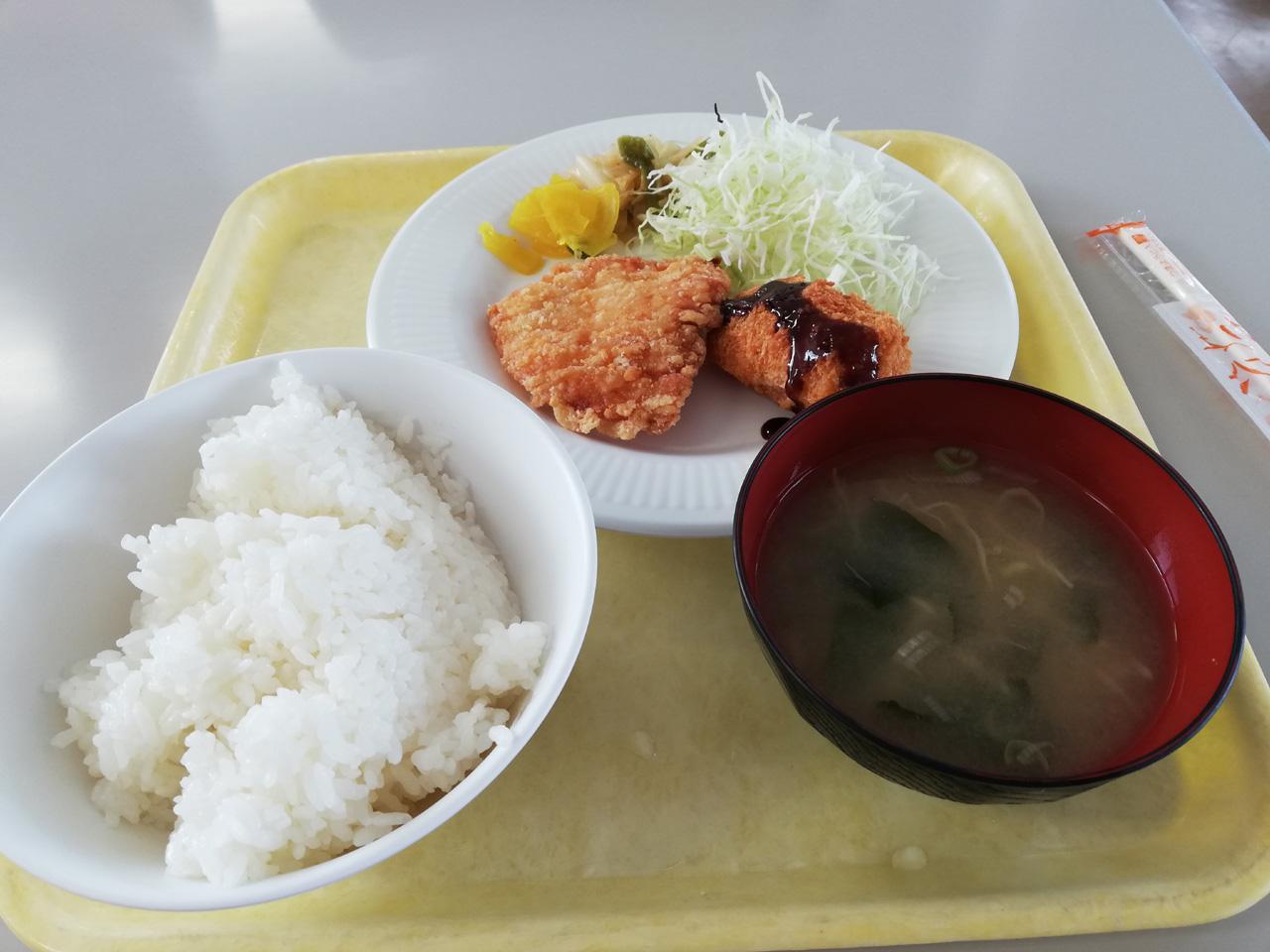 7日目の昼食